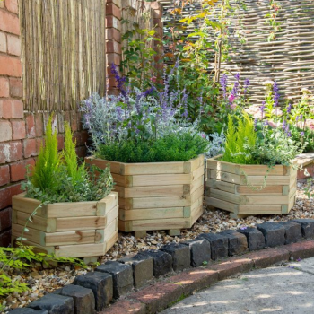 Hartwood Set of Three Hexagonal Planters