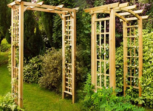 Best Climbing Roses for Garden Arches