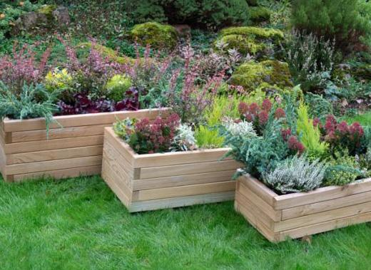 How to Humanely Protect Your Flowers and Vegetables from Pests